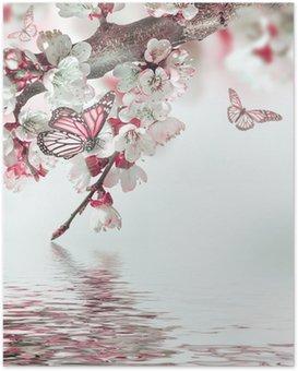 Poster Apricot bloemen in het voorjaar, bloemen achtergrond