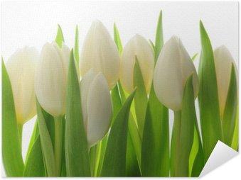 Póster Autoadhesivo Los tulipanes