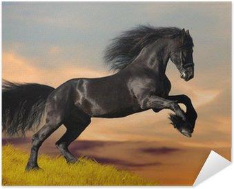 Póster Autoadhesivo Negro caballo Frisón galopa en la puesta del sol