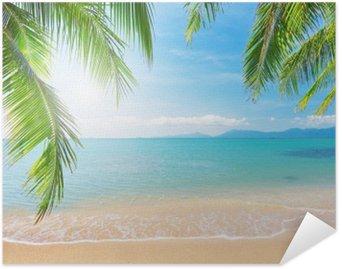 Póster Autoadhesivo Palm y playa tropical