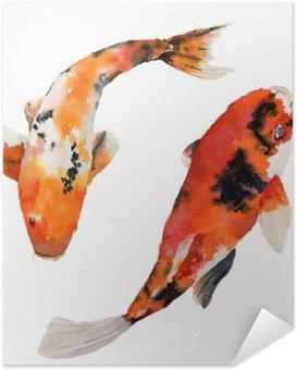 Poster Autocollant Aquarelle arc-oriental carpe définie. poissons Koi isolé sur fond blanc. illustration sous-marine pour la conception, de fond ou de tissu