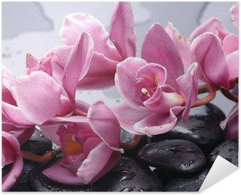 Poster Autocollant Ensemble de fleur d'orchidée cattleya et la pierre avec des gouttes d'eau