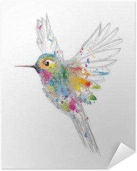 Poster Autocollant Kolibri