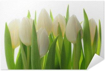 Poster Autocollant Tulips