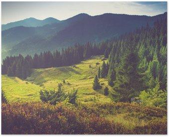 Beautiful summer mountain landscape at sunshine. Poster