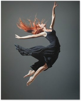 Poster De danser