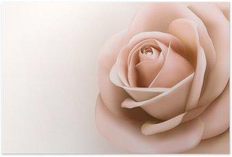 Poster Fond avec une belle rose. Vecteur