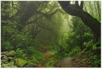 Poster Forêt de la jungle népalaise