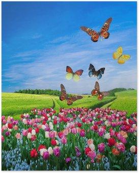Poster Gebied van kleurrijke bloemen en een vlinder groep