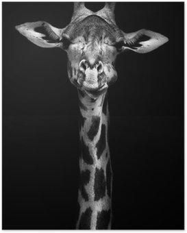 Poster Girafe en noir et blanc