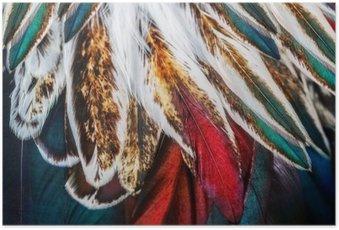 Poster Groupe de plumes marron brillant d'un oiseau