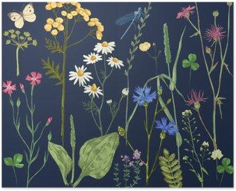 Poster Hand getrokken set met kruiden en bloemen