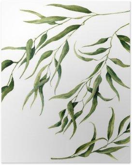 Poster HD Aquarelle feuilles d'eucalyptus ensemble de la branche. Peint à la main des éléments floraux. Illustration isolé sur fond blanc. Pour la conception, le textile et le fond.