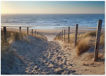 Poster HD Chemin de plage de la mer du Nord dans le soleil d'or