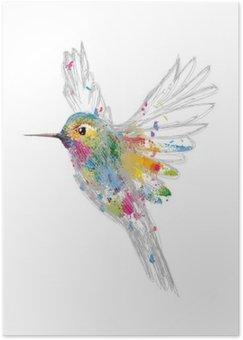 Póster HD Humming-bird