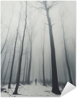 Poster HD man in forest with tall trees in winter