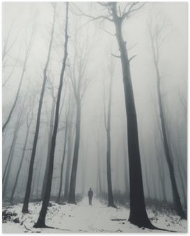 man in forest with tall trees in winter Poster HD