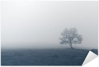 Poster HD solitary tree with fog