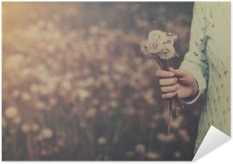 Poster HD Woman with bunch of dandelion flowers in hand