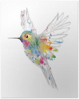Kolibri Poster