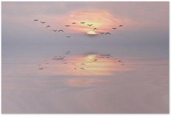 Poster Les douces couleurs de l'aube