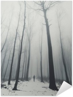 Poster man in forest with tall trees in winter
