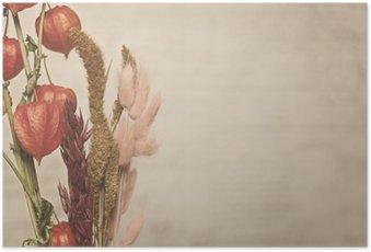 Poster Närbildsvy av Physalis växt. Vintagestil