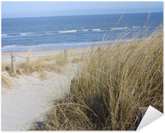 Poster Nordsjön stranden