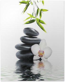 Poster Orchidée blanche fleur fin bambou