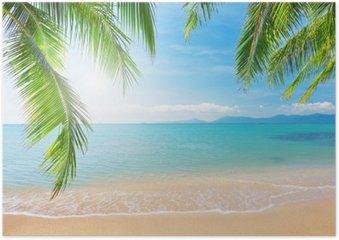 Póster Palm y playa tropical
