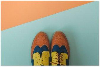 Poster Plat fashion set: gekleurde vintage schoenen op gekleurde achtergrond. Bovenaanzicht.