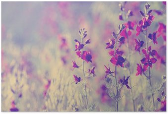 Poster Purple fleurs sauvages