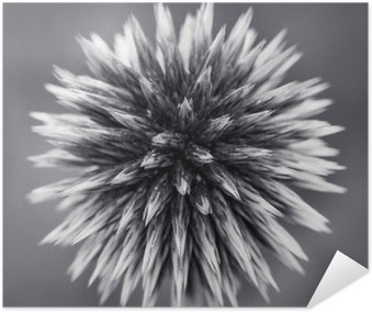 Purple Globe Thistle B&W Poster