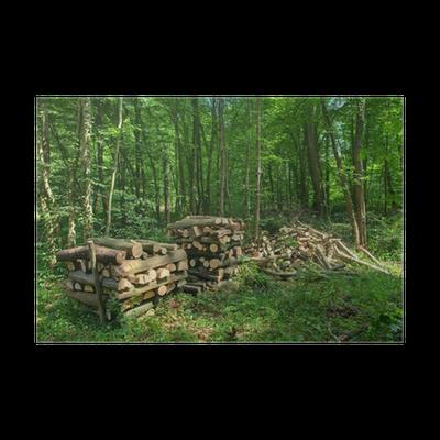 Poster st re de bois de chauffage pixers nous vivons - Stere de bois ...