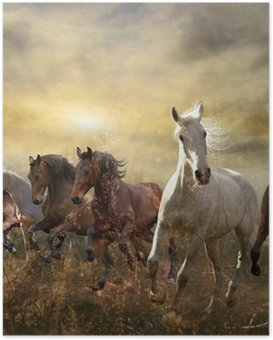 Poster Troupeau de chevaux au galop libre au coucher du soleil