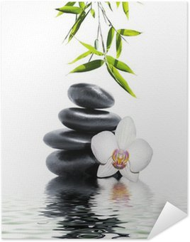 Poster Vit orkidé slut bambu