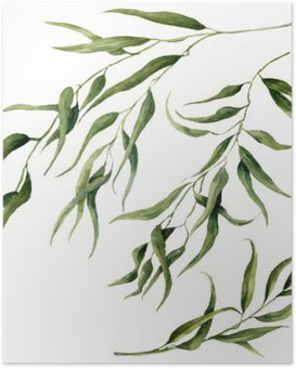 Poster Watercolor eucalyptus bladeren tak set. Hand geschilderde bloemen elementen. Illustratie op een witte achtergrond. Voor het ontwerp, textiel en achtergrond.