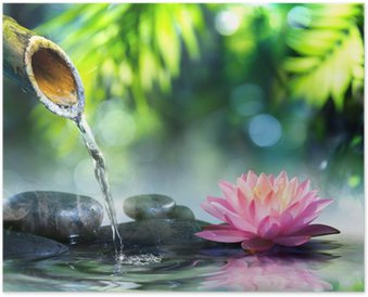 zen garden with black stones and pink waterlily Poster