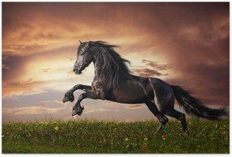 Poster Zwarte Friese paarden in galop