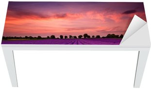 Proteção para Mesa e Secretária Stunning landscape with lavender field at sunset