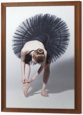 Quadro in Cornice The dancer