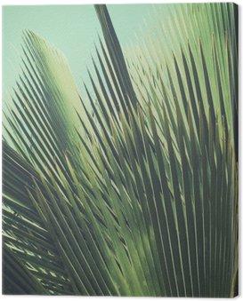 Quadro su Tela Abstract tropical background vintage. Foglie di palma al sole.