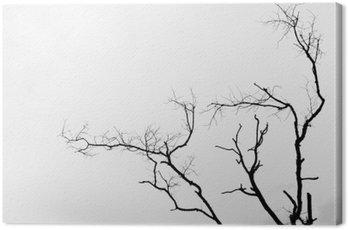 Quadro su Tela Black and white