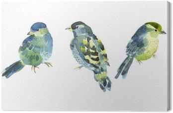 Quadro su Tela Collezione di uccelli Acquerello per la progettazione.
