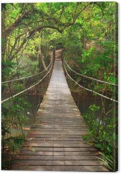 Quadro su Tela Colmare nella giungla, parco nazionale di Khao Yai, Thailandia