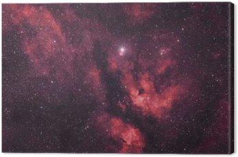 Quadro su Tela Gasnebel um den Stern Sadr im Sternbild Schwan