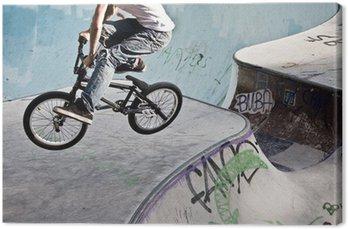 Quadro su Tela Im Skatepark BMX