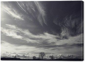 Quadro su Tela In bianco e nero fotografia di paesaggio autunnale