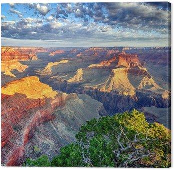 Quadro su Tela Luce del mattino al Grand Canyon