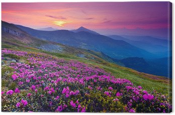 Quadro su Tela Paesaggio di montagna